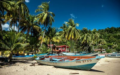 The Dream Boats of Carriacou